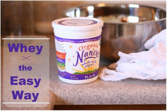Plain Nancy's Organic is a good choice
