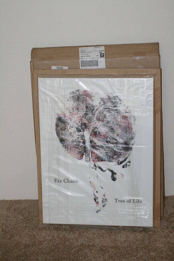 Printed Canvas wrapped in protective plastic from shipping