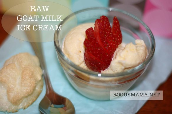 Raw Ice Cream