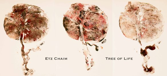 Etz Chaim - The Tree of Life - Placenta Prints