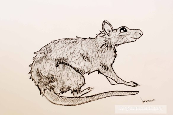 Wuzzie the Rat